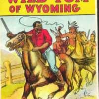 <em>Wild Tom of Wyoming</em>(Beadle's Frontier Series no. 17)