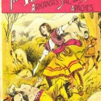<em>The Woman Trapper</em>(Beadle's Frontier Series no. 35)