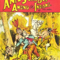 <em>A New York Boy Among the Indians</em>(Beadle's Frontier Series no. 29)